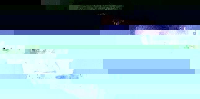 4528341-manuel-valls-le-vice-president